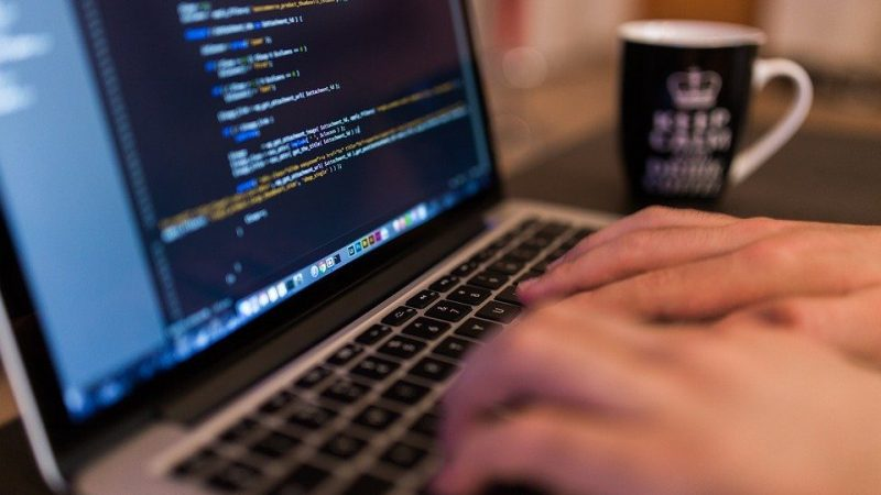 The Importance of Anti-Malware Software